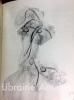 Peintures et dessins avec un avant propos et des légendes extraites de l'oeuvre poétique de l'auteur.. MICHAUX (Henri)