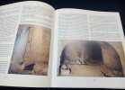 Les Souterrains - Le monde des souterrains-refuges en France. Jérome et Laurent Triolet