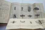Introduction a l'histoire naturelle des insectes en forme d'entretien . Anonyme ( Abbé Lalanne )