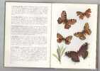 Papillons De Jour et De Nuit. GUGGISBERG C A W HUNZINGER E
