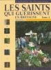 Les Saints Qui Guérissent en Bretagne. Tome 2. Gancel, Hippolyte