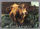 Rudolf Koller.. Collectif: