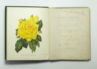 The rose garden in two divisions. Ninth edition.. PAUL William F. L. S.:
