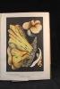 Les champignons comestibles et les espèces vénéneuses avec lesquelles ils pourraient être confondus.. LEUBA F: