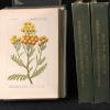 Iconographie de la flore française.. BAILLON H: