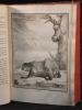 Histoire naturelle, générale et particulière, avec la description du Cabinet du Roi. Tome Treizième.. BUFFON Georges-Louis Leclerc; DAUBENTON Louis ...