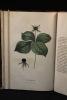 Description des plantes vénéneuses du canton de Neuchâtel à l'usage des écoles et des gens de la campagne.. GODET Charles-Henri: