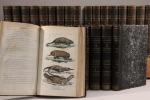 Oeuvres complètes de Buffon, enrichies d'une vue générale des progrès de plusieurs branches des sciences naturelles, et mises en ordre par M. le comte ...
