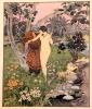 Le jardin des caresses.. TOUSSAINT Franz: