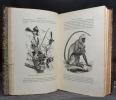 Voyages dans les deux océans Atlantique et Pacifique. 1844 et 1847. Brésil, Etats-Unis, Cap de Bonne-Espérance, Nouvelle-Hollande, Nouvelle-Zélande, ...