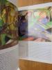 EXPRESSIONNISME une révolution artistique allemande. DIETMAR ELGER
