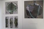PAYSAGES DE L'EXTREME. Brochure de l'exposition du 10 octobre au 8 novembre 2008 à la Villa Beatrix Enea à Anglet.. Barbara Shroeder