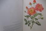 ROSES ANCIENNES - ROSES MODERNES. Stelvio Coggiatti / Anne Marie Trechslin