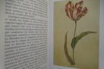 LA TULIPO MANIA. L'histoire d'une fleur qui valait plus cher qu'un Rembrandt.. Mike Dash