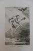 Linda Maestra (Jolie maîtresse). Francisco de Goya (1746-1828)