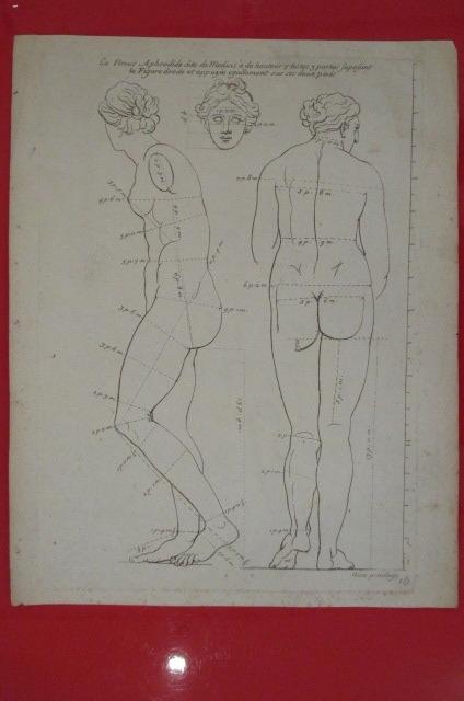 """""""La Vénus Aphrodide dite de Medicis à de hauteur 7 testes 3 parties suposant la Figure droite et appuyée égallement sur ses deux pieds"""". LES ..."""