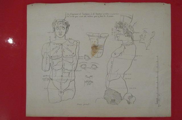 """""""Ce fragment de l'antique a de hauteur 7 têtes 2 parties. On croit que c'est du même qui à fait Lantin"""". LES PROPORTIONS DU CORPS HUMAIN MESUREES SUR ..."""