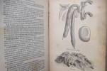 MANUEL théorique et pratique DU JARDINIER. Contenant : Les époques des Semis, la taille des Arbres - La Description et la culture des plantes ...