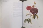 LE GRAND LIVRE DE LA ROSE.. Georges Delbard