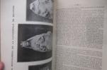 DE L'EVOLUTION DU THEME DE LA VIERGE DANS L'ART BAYONNAIS DU MOYEN-AGE.. René Cuzacq