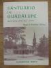 Santuario de Guadalupe - Guadalupe ko ama. Florentino Portu
