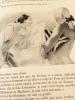 Mémoires. 1734 - Extraits - 1755. Colligés par René Groos. Mémoires 1755 - Extraits - 1772. Illustrations de Brunelleschi.. [BRUNELLESCHI]. - CASANOVA ...