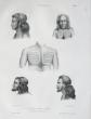 [TIKOPIA] Tikopia.. DUMONT D'URVILLE (Jules-Sébastien-César);SAINSON (Louis-Auguste de);