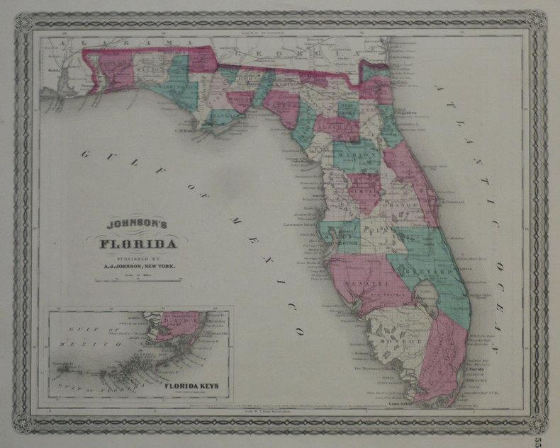 Johnson's Florida.. JOHNSON (Alvin Jewett);