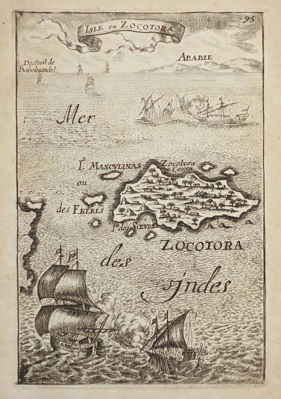 [YEMEN] Isle de Zocotora.. MANESSON-MALLET (Allain).