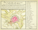 Plan de la ville d'Egra située sur la frontière de Bohême dans le haut Palatinat.. EGRA. MANUSCRIT.