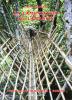 La Lamentation du Lamantin Aventures Géologiques à Bornéo. André COURNUT