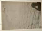 BURAGLIO. Catalogue de l'exposition Buraglio chez Jean Fournier du 7 Mars au 11 Avril 1987. . [BEAUX-ARTS]