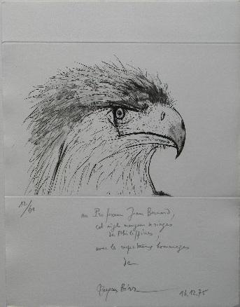 L'AIGLE MANGEUR DE SINGES. Gravure originale.. BIRR (Jacques)