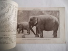 ONG-BO l'éléphant. anonyme