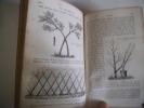 Cours élémentaire théorique et pratique d'arboriculture. DU BREUIL