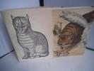 Bibliothèque illustrée du chat . RAABE Juliette