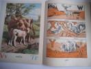 ABC des animaux. . Abécédaire