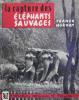 La capture des éléphants sauvages.. HORVAT FRANCK