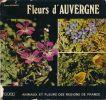 Fleurs d'Auvergne. GRENIER Ernest