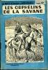 Les orphelins de la savane. DAZERGUES Max-André