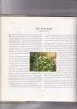 Recettes des forêts et des champs Photographies de John Miller. STYLE Sue