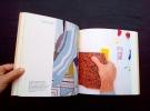 Roy Lichtenstein : mural with blue brushsstroke - . LICHTENSTEIN (Roy) - TOMKINS (Calvin) - ADELMAN (Bob) -
