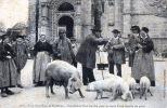 UNE FOIRE DANS LE MORBIHAN ,CONCLUSION D ' UN Marché POUR LA VENTE D'UNE FAMILLE DE PORCS . Morbihan