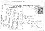 Tâche solaire. Observatoire du Pic du Midi