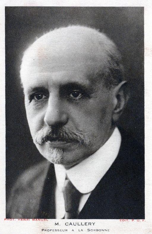 CAULLERY M. . CAULLERY