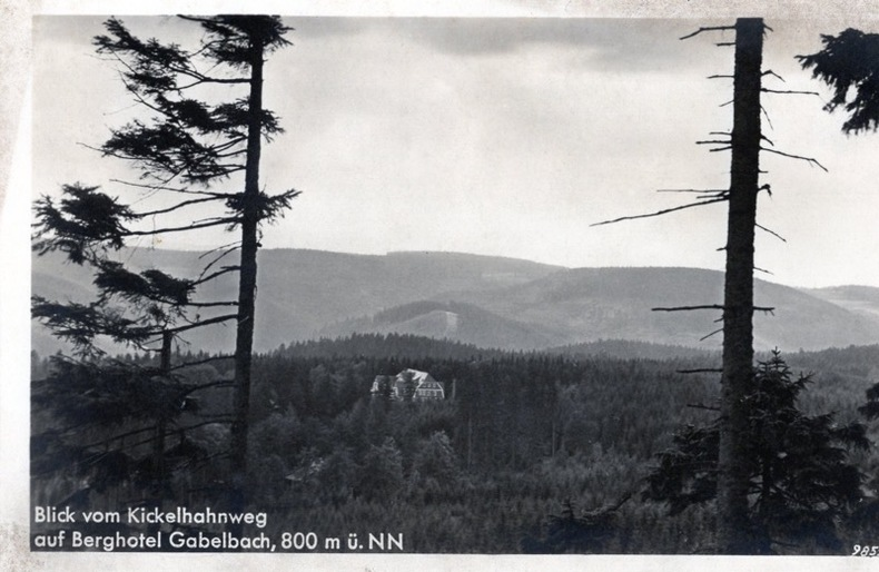 Blick Vom KICKELHAHNWEG ,auf Berghotel Gabelbach , . Allemagne