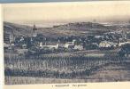 RIQUEWHIR . Alsace