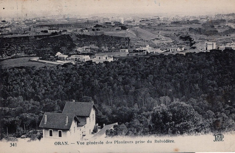 ORAN , Vue générale des Planteurs prise du Belvédère, . Algérie