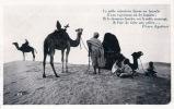 MAROC, une halte au désert, . Prouho