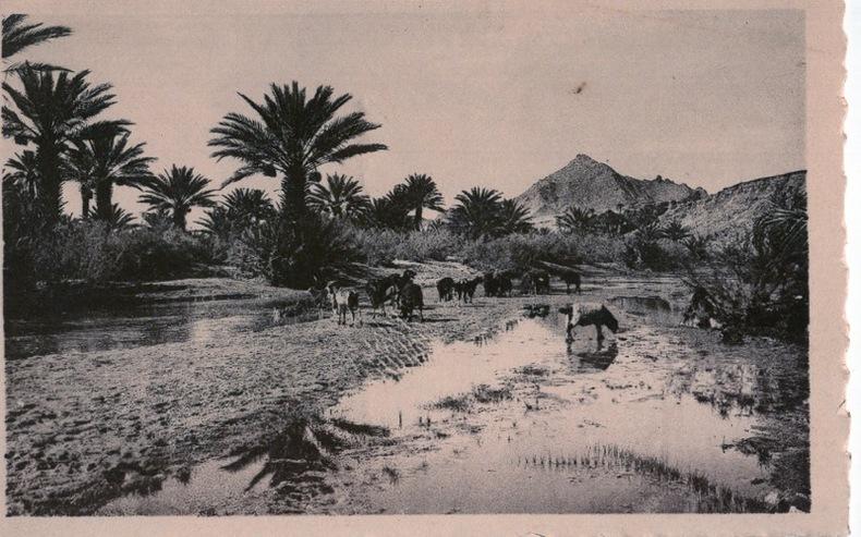 MAROC, paysage du sud, . Maroc